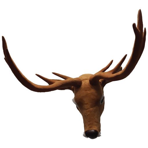 Peuran pää 70x50x30cm