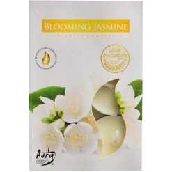 Blooming Jasmine tuikku