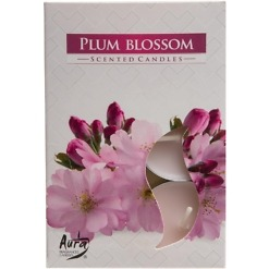 Plum Blossom tuikku